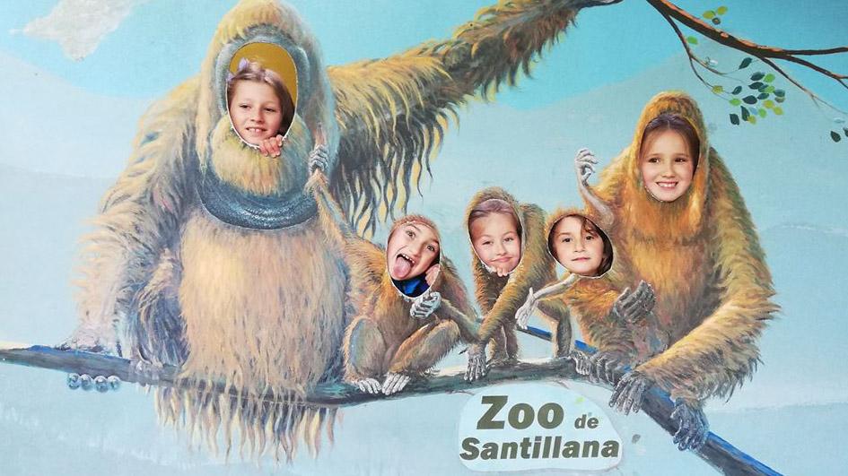 Visita de 1º y 2º de Primaria al Zoo de Santillana